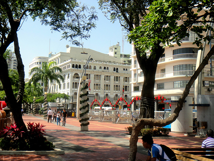 The looks of Guayaquil during Christmas in Ecuador
